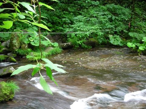 2010年 幻の秘湯・湯めぐり 川又温泉15