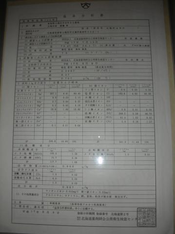 2010年 北湯沢温泉 鯉川旅館14