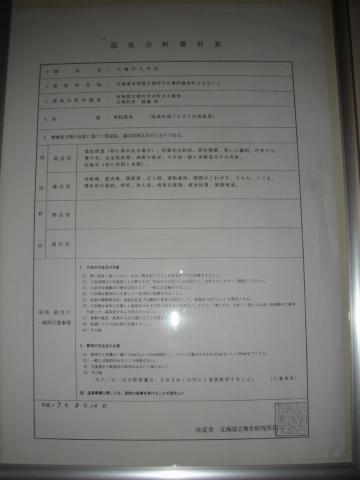 2010年 北湯沢温泉 鯉川旅館15