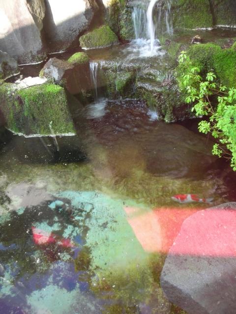 2010年 北湯沢温泉 鯉川旅館4