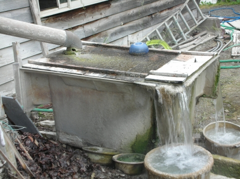 2010年6月 大船下の湯 源泉18