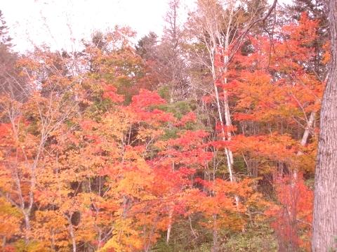 2010年10月11日然別峡オフ会福原山荘6