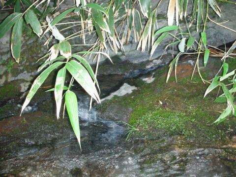 2010年②川又温泉7月37