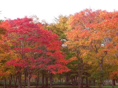 2010年10月11日然別峡オフ会福原山荘10