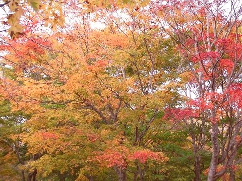 2010年10月11日然別峡オフ会福原山荘11