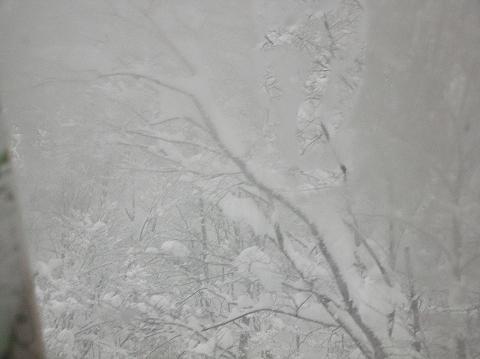 2011年1月10日 御宿かわせみ1