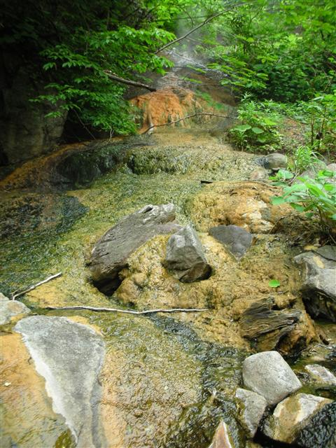 2010年6月 見市川の湯8