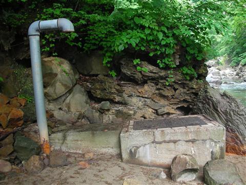 2010年6月 見市川の湯13