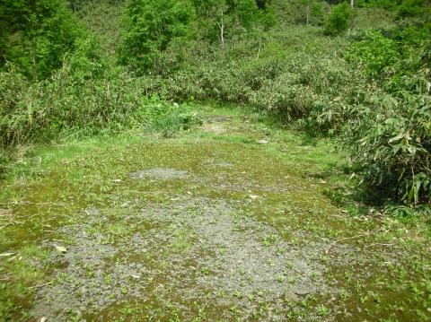 2010年ニセコ湯めぐり小湯沼5