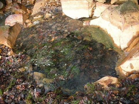 2010年11月 和琴半島 奥の湯8