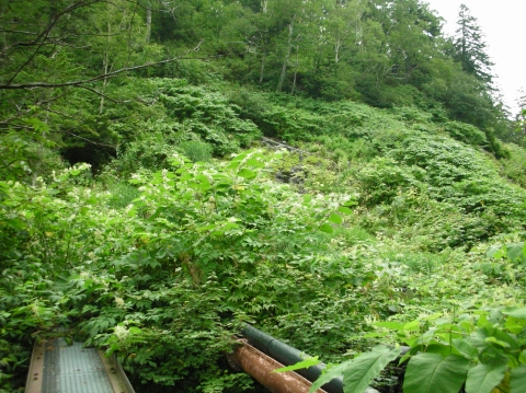 2010年ピラの湯・岩の湯5