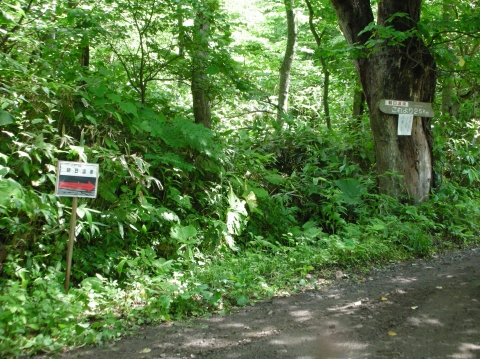 2010年7月31日 朝日温泉災害3