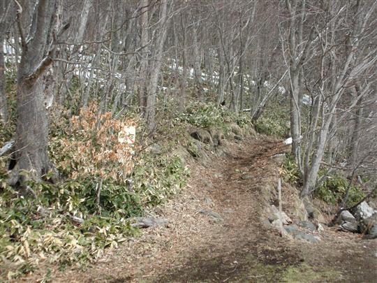 2010年3月 屈斜路湖湯巡り 奥の湯③