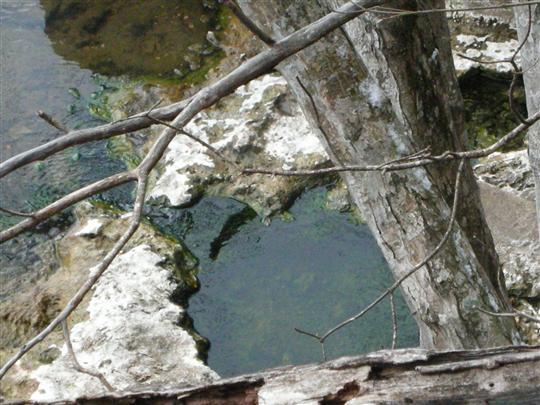 2010年3月 屈斜路湖湯巡り 奥の湯⑧
