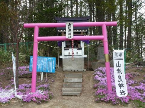 東藻琴芝桜まつり12