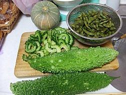 いただきもの~ お野菜