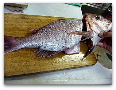 鯛の調理中