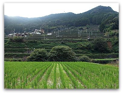佐賀県 風景