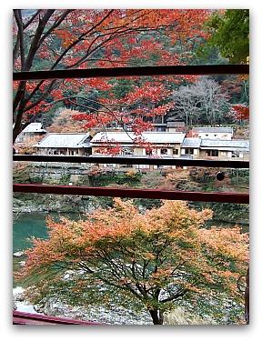 トロッコ列車からの眺め