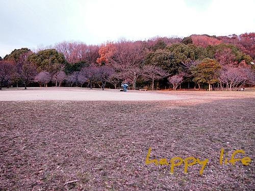 2012_010920100279.jpg