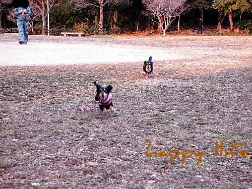 2012_010920100283.jpg