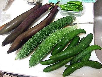 愛媛のお野菜