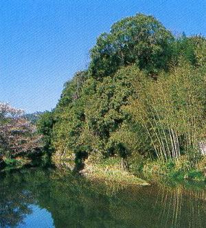 河内町鶴亀山