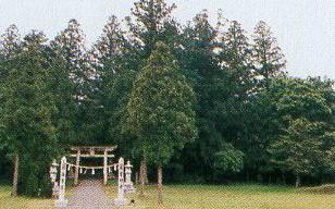 豊栄町の本宮八幡神社