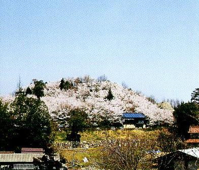 高塚城跡公園