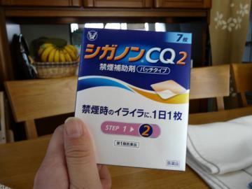シガノン CQ2