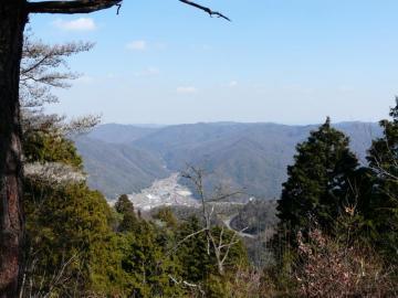 竹林寺から見た河内町市街地