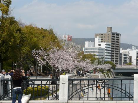 元安橋から見た桜 その2