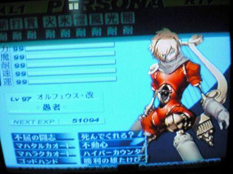 NEC_0038.jpg
