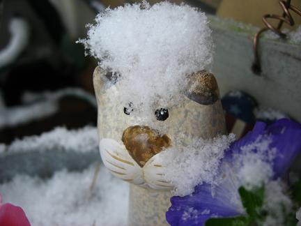 コック帽みたいな雪