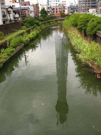 十間川に映るツリー