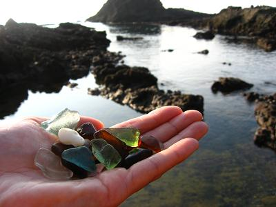 海岸で見つけた宝物