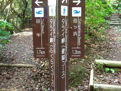 タライ岬遊歩道にて 3