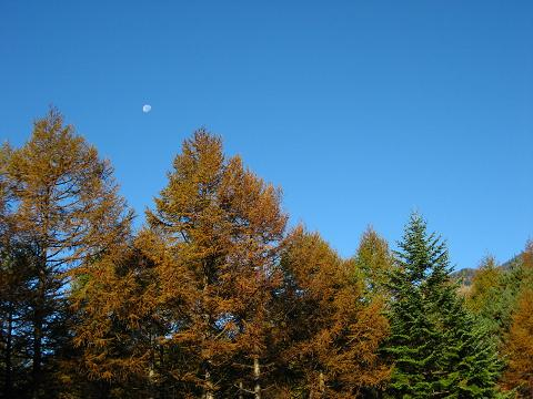 八ヶ岳と名残の月