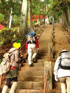 山頂に向かって・・・いきなり階段!