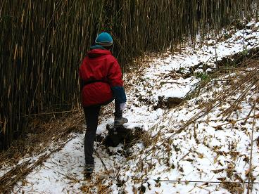 長尾峠で雪道をのぼる