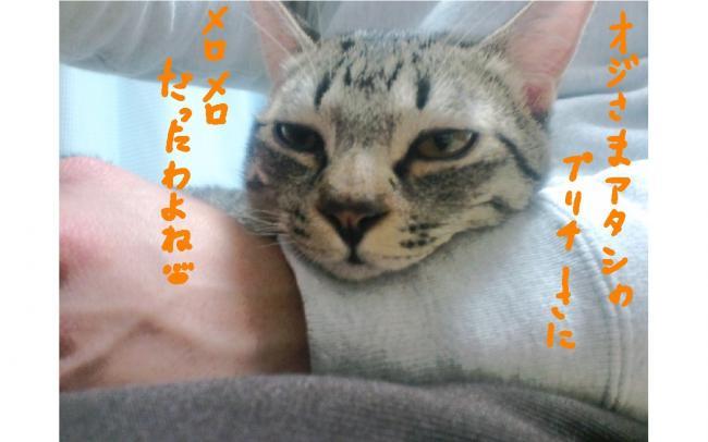 yuzu49.jpg