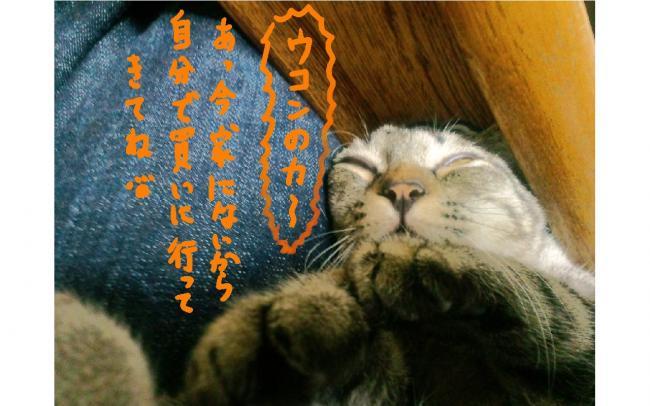 yuzu55.jpg