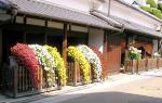 枚方鍵屋菊花祭