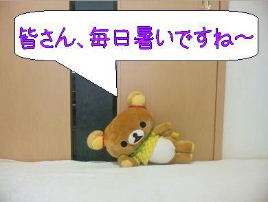 SBSH0089.jpg