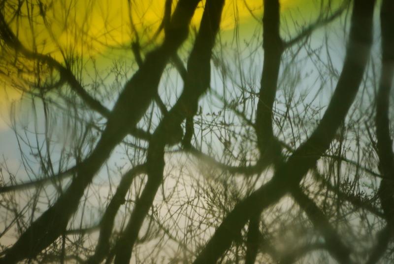 P1050510 2011-03-31 12-11-32