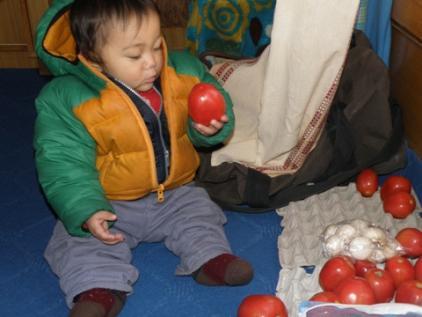 tomato and soichi1