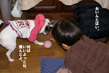 20100103_02newyear