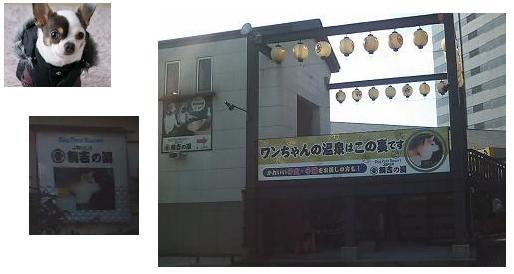 20100219_04大江戸温泉