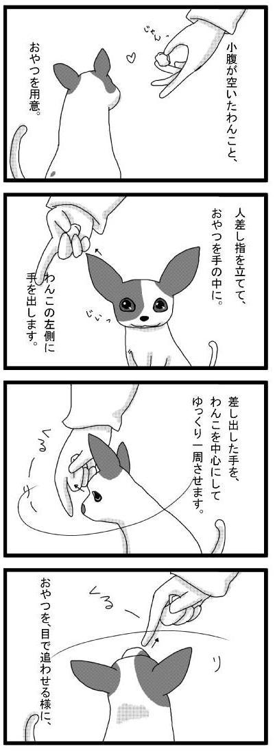 20100311_01くるうり