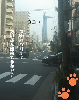 20100313_08はる♪